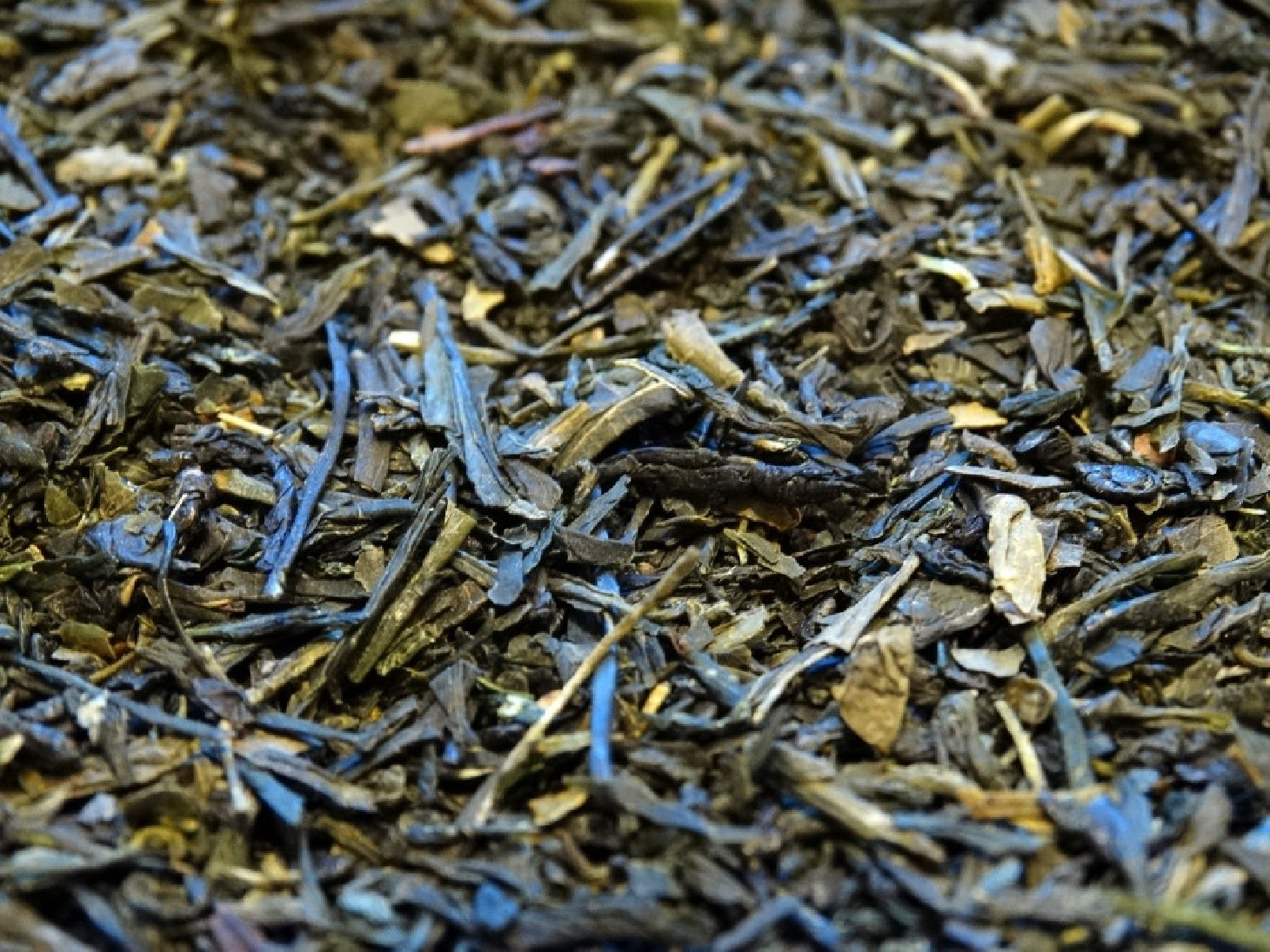 Green tea Sencha Koto from Japan, pure origin
