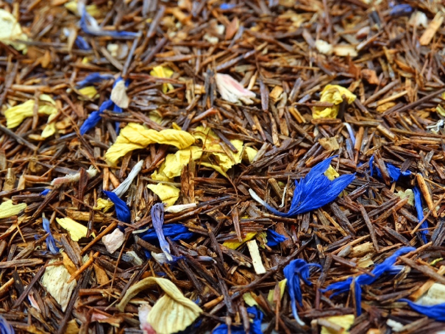infusion sans théine rooibosh casa nova à déguster le soir tea et cie comptoir de thé expédition livraison