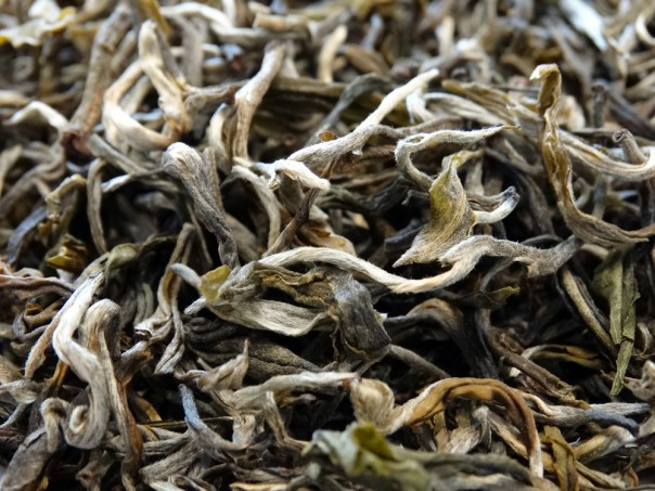 Exceptional White Tea from China, Yunnan Province