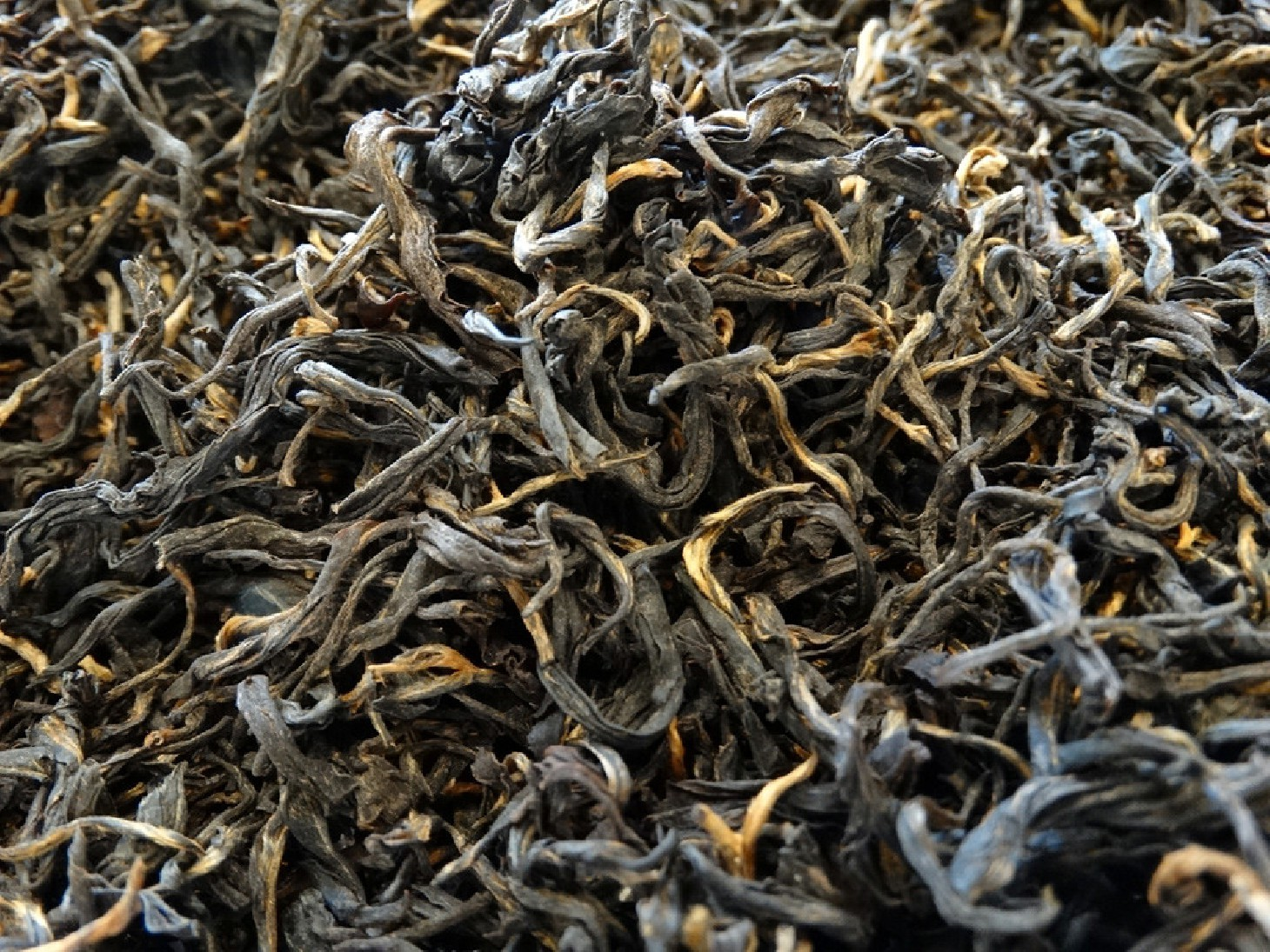 Premium black tea from Great Garden of Nepal