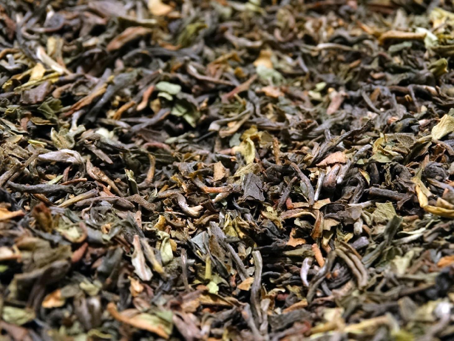 thé noir pure origine inde darjeeling margaret hope ftgfop1 haut grade sélection par Tea & cie comptoir de thé sur internet